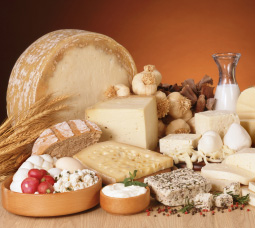 CHEESE PRODUCTS